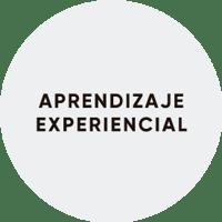 aprendizaje-experencial.png